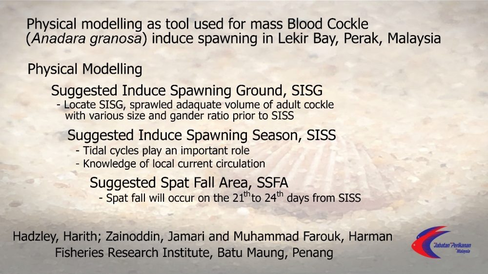 Physical modelling as tool used for mass Blood Cockle (Anadara granosa) induce spawning in Lekir Bay, Perak, Malaysia