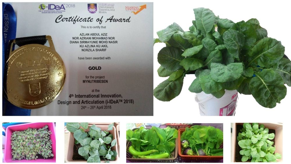 MyNutriBesen: Empowering Communities with An Urban Farming Product Post COVID-19
